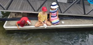 Read more about the article Planning a trip to Noosa, here are fun activities to do with kids